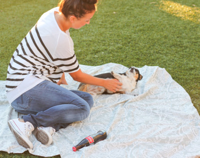 roll-up-picnic-blanket-1