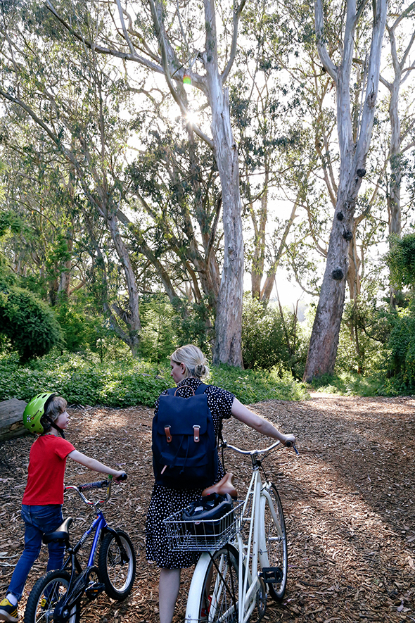 A Bike Ride In Golden Gate Park Say Yes