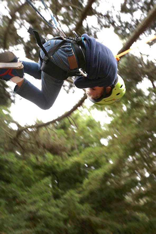 treeswinging5