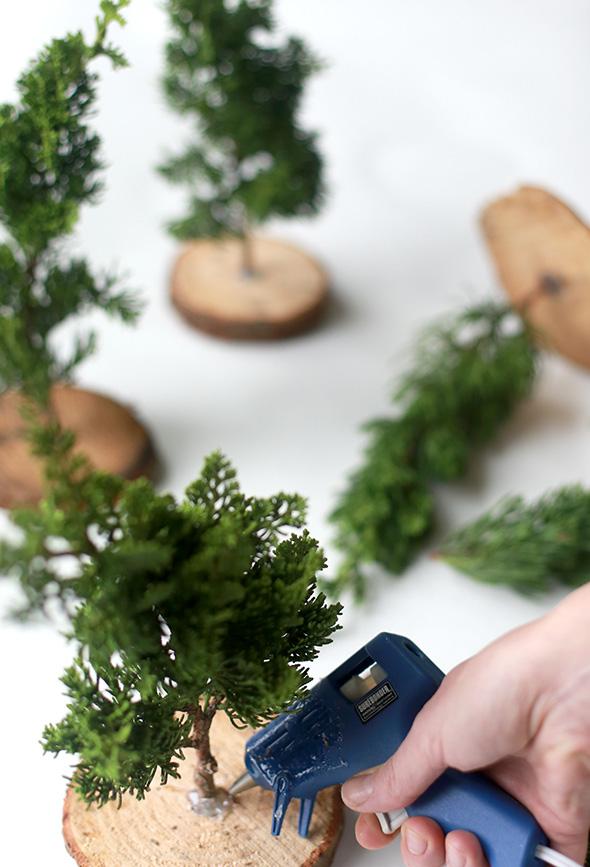 DIY Fresh Mini Christmas Trees (from Tree Lot Scraps ...