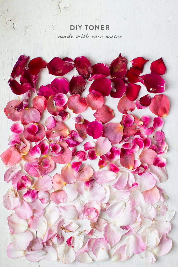 DIY Toner made with Rose Water - Say Yes