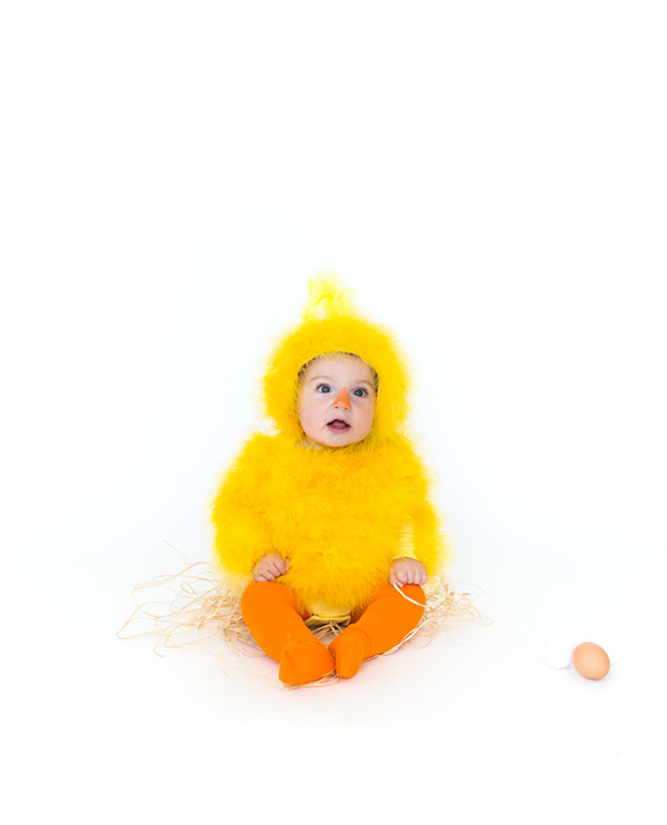 chick6
